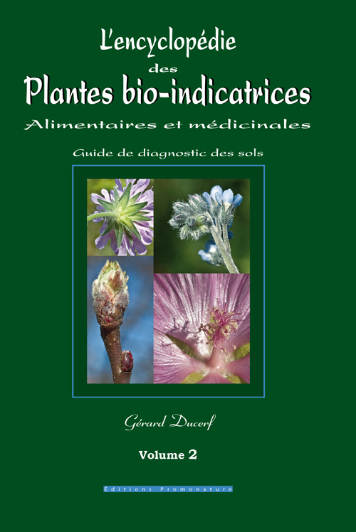 encyclopedie des plantes medicinales. Black Bedroom Furniture Sets. Home Design Ideas