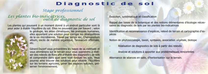 Stage Diagnostic de sol du 4 au 8 septembre 2017